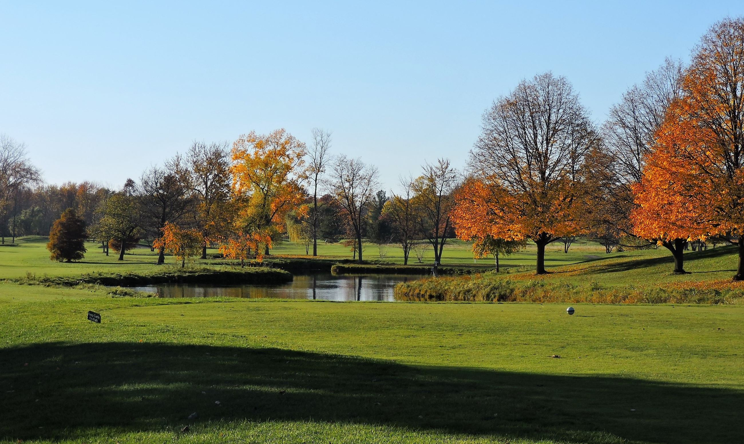 Pond and Trees at 18-Hole Golf Course